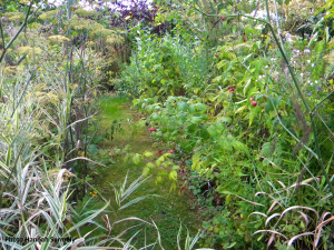Allée jardin 2
