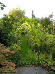Allée jardin 3