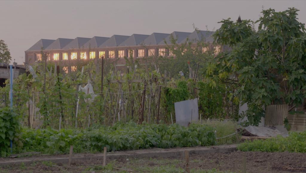 Le jardin et l'usine