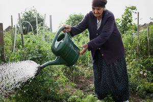 La mère arrosant le jardin