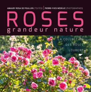 Roses grandeur nature - couverture